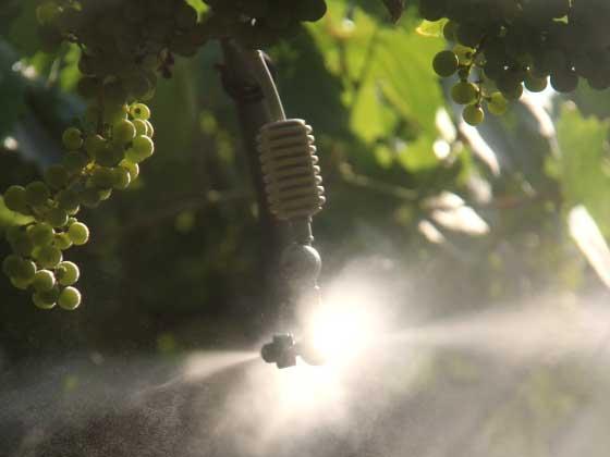 01.18 microrrigazione irrigazione veneta