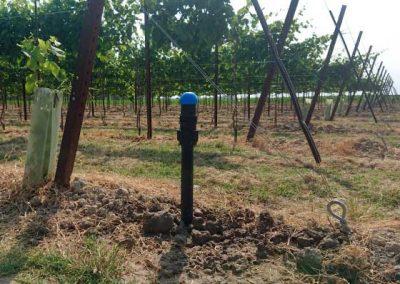 01.7 subirrigazione irrigazione veneta