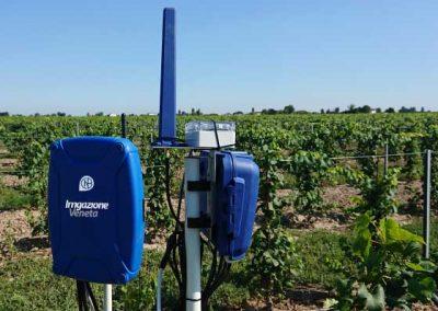 01.8 gestione dellirrigazione irrigazione veneta