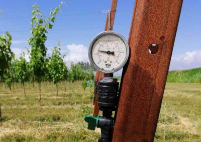 01.8 subirrigazione irrigazione veneta