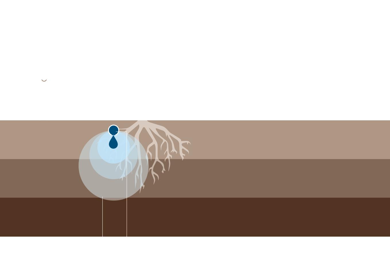 02.1 gestione dellirrigazione irrigazione veneta