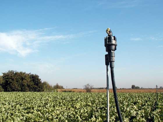 02.1 microrrigazione irrigazione veneta