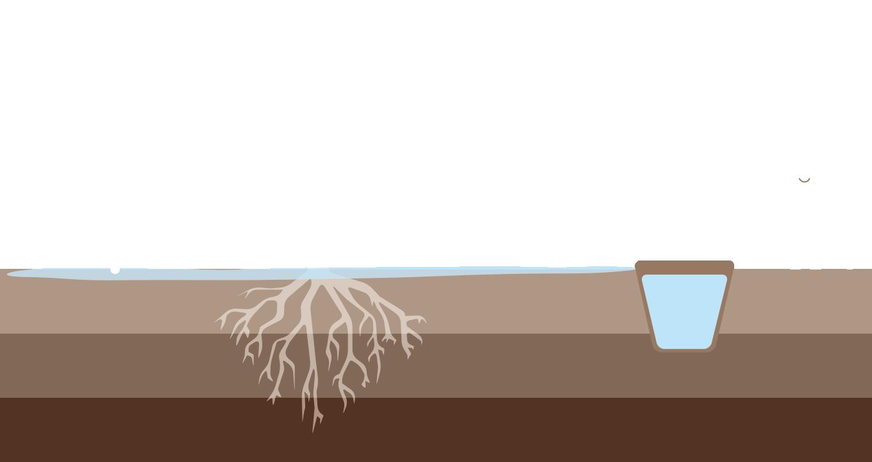 02.3 gestione dellirrigazione irrigazione veneta